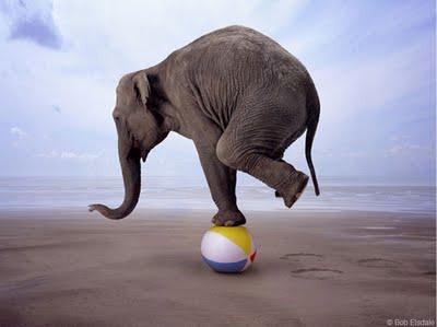 gop_balancing_act23